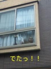 笹田道子 公式ブログ/☆沖縄系☆ 画像1