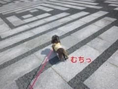 笹田道子 公式ブログ/☆ムチムチお尻☆ 画像1
