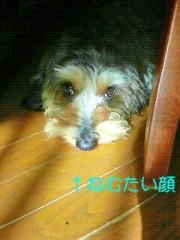 笹田道子 公式ブログ/☆マスクマン☆ 画像2