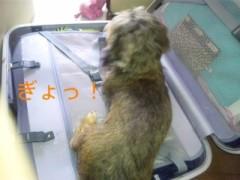 笹田道子 公式ブログ/☆旅立ちは…え!? ☆ 画像1