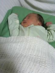 野崎史湖 公式ブログ/華ちゃんに赤ちゃん誕生 画像1