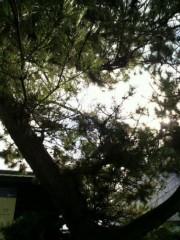 KICO 公式ブログ/昨日の空と風景。 画像2