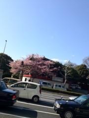 KICO 公式ブログ/豊川稲荷。 画像1