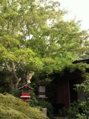 KICO 公式ブログ/庭園。 画像2