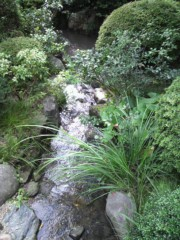 KICO 公式ブログ/庭園。 画像1
