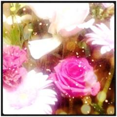 KICO 公式ブログ/お花。 画像1