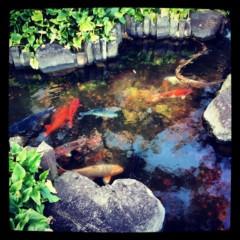 KICO 公式ブログ/長谷。 画像2