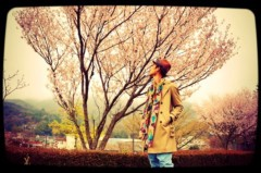TERUJi / テルジヨシザワ 公式ブログ/白濁湯と桜前線 画像2