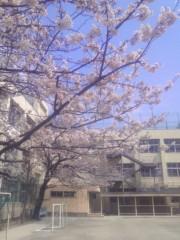 TERUJi / テルジヨシザワ 公式ブログ/2011統一地方選 画像1