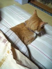 こばんざめ佐藤 公式ブログ/寒くなってきました。 画像1