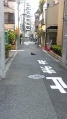 西澤翔吾 公式ブログ/かわいいなー 画像1