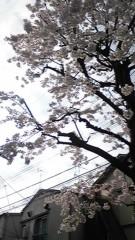 西澤翔吾 公式ブログ/いやー 画像1