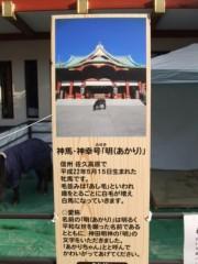 倉田恭子 公式ブログ/神馬 画像1
