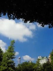 倉田恭子 公式ブログ/天高く… 画像1