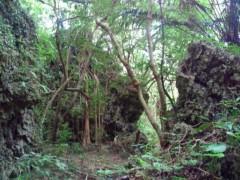 ATARU (UZUMAKI) 公式ブログ/沖縄その2であります! 画像2