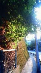 秋本奈緒美 公式ブログ/陽のあたる坂道 画像1