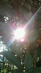 秋本奈緒美 公式ブログ/秋の陽 画像1