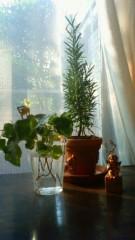 秋本奈緒美 公式ブログ/窓辺の風景 画像1