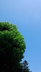 秋本奈緒美 公式ブログ/八月最後の日曜日 画像1