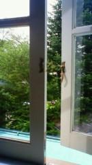 秋本奈緒美 公式ブログ/小鳥のさえずり 画像1