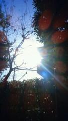 秋本奈緒美 公式ブログ/雨上がりの朝の 画像1