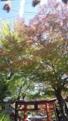 秋本奈緒美 公式ブログ/秋の彩 画像1