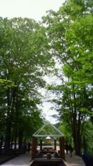 秋本奈緒美 公式ブログ/新緑の 画像1