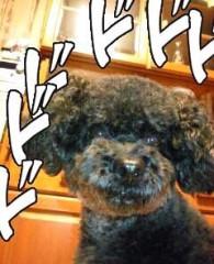 大川武至 公式ブログ/おはようございます! 画像1
