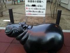 石井春花 公式ブログ/カバ。 画像1