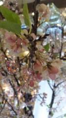 相沢樹々 公式ブログ/みなとみらい 画像2