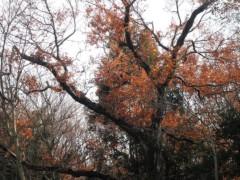 赤池公一 公式ブログ/狭山湖 画像2