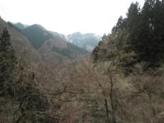 赤池公一 公式ブログ/ワサビ田 画像2