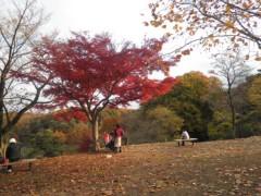 赤池公一 公式ブログ/晩秋の・・・初冬の・・・狭山公園。 画像3