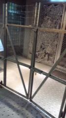 梅澤悠 公式ブログ/脱獄。 画像1