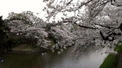 下山葵 公式ブログ/お花見散歩 画像3