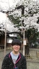 下山葵 公式ブログ/お花見散歩 画像2