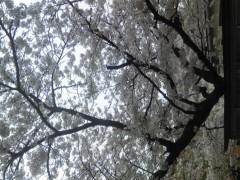 岡元慶太 公式ブログ/誓い 送り物 画像1