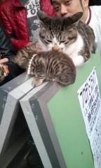 猫柳ロミオ 公式ブログ/ポップにいくよ 画像1