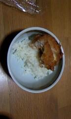 猫柳ロミオ 公式ブログ/チキン丼 画像1