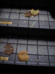 猫柳ロミオ 公式ブログ/ビックマック 画像1