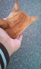 猫柳ロミオ 公式ブログ/すり寄ってきよる 画像3