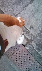 猫柳ロミオ 公式ブログ/すり寄ってきよる 画像1