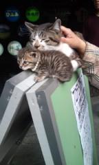 猫柳ロミオ 公式ブログ/ポップにいくよ 画像2