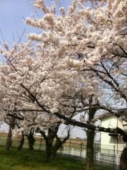 房みどり 公式ブログ/おつかれちゃんちゃん 画像3