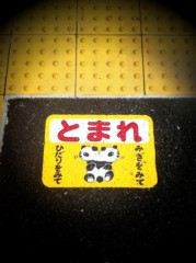 辻詩音 公式ブログ/パンダでオセロ 画像1