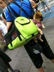 辻詩音 公式ブログ/犬×犬 画像1