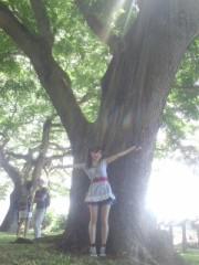 辻詩音 公式ブログ/この木なんの木気になる木 画像1
