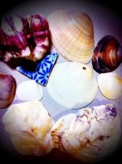 辻詩音 公式ブログ/貝殻に耳をおしあてて 画像1