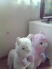 猪野由梨佳 公式ブログ/ガッカリス。 画像1