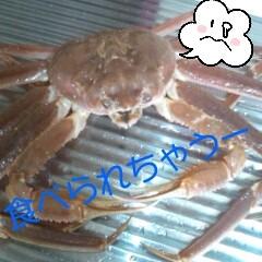 佐久間恵 公式ブログ/怖いかお。 画像1